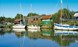 mathes_richesse.jpg