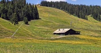 Fromages de la région Rhône-Alpes : vache, chèvre… Chacun ses goûts !