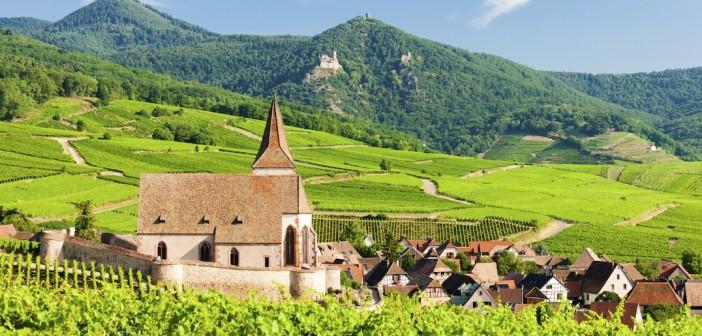 Vignoble alsacien : partez à sa découverte avec le Train Gourmand !