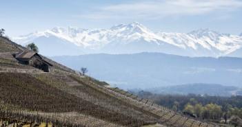 La route des vins de Savoie, entre lacs et montagnes