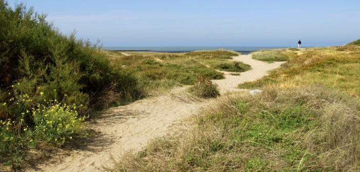 L'île Oléron, un cadre naturel exceptionnel