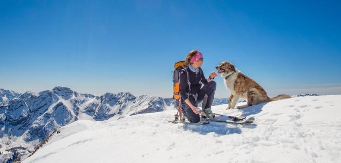 Vacances avec un chien au ski: profitez-en ensemble!
