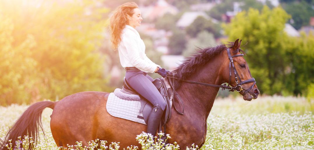 La randonnée à cheval, une autre façon de se ressourcer