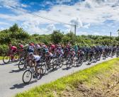 Tour de France 2018 : à chaque étape ses spécialités culinaires