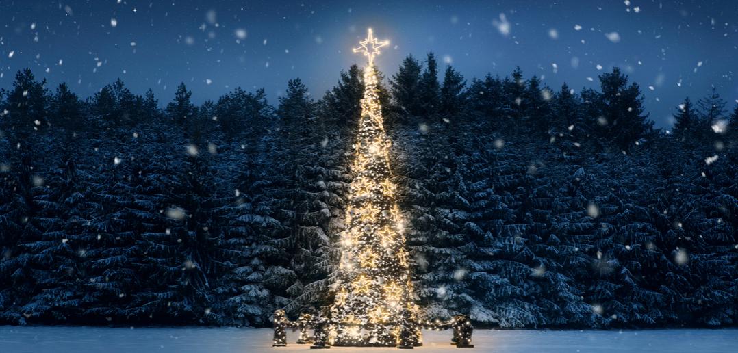 Fêter Noël en vacances : comment s'organiser ?
