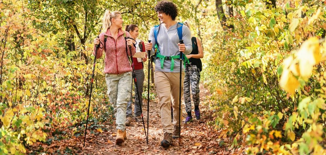 Activités à faire en famille en forêt